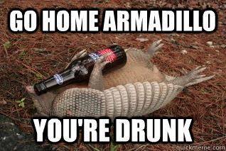 Stuffed armadillo with a beer in their arms, caption over image says 'Go Home Armadillo You're Drunk'